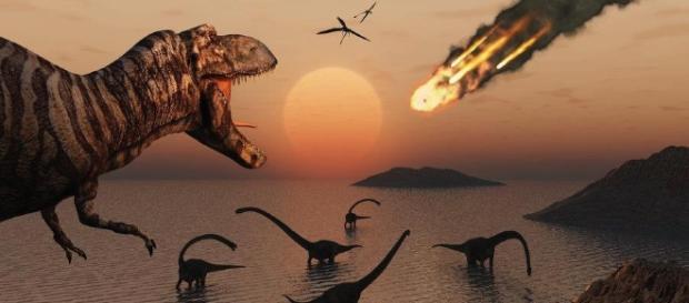 Os dinossauros foram extintos pelo meteoro, segundo cientista p