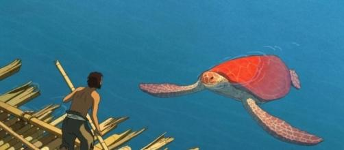One of the first interations between the man and the turtle. (Taken from the BN library)
