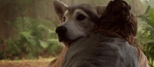 Arya Stark e Nymeria poderão se reencontrar na 7ª temporada de Game of Thrones