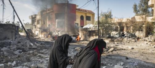 UN News Centre | News Focus: UN and Counter-Terrorism - un.org