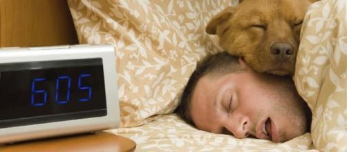 Mais de nove horas de sono por dia pode indicar problemas neurológicos