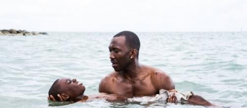 """""""Moonlight"""", la película más pequeña de negros gays que eclipsó a todo Hollywood entero."""