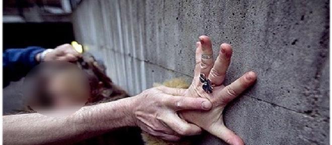 Idosa com deficiência é estuprada por 2h em Brasília