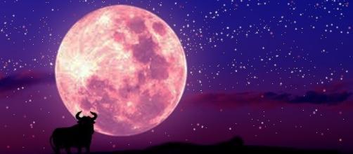 Oroscopo del giorno | previsioni di domani 2 marzo 2017 - Luna in Toro.