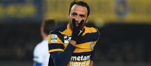 Pazzini, protagonista atteso di Verona-Benevento