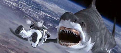 Syfy announces production of Sharknado 5 --thecelebritycafe.com