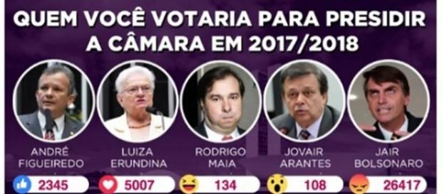 """O parlamentar chamou os apoiadores de Bolsonaro de """"robozinhos fascistas""""."""