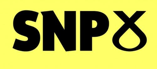Dundee SNP Councillor Jimmy Black to step down | Scotland, UK ... - scotlanduk.co.uk