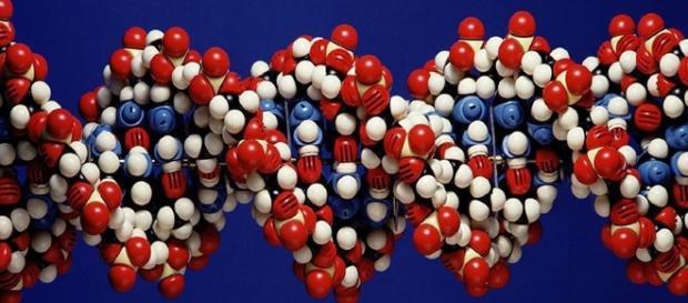 Global Team Taps Into DNA Behind Type 2 Diabetes | Health ... - lacrossetribune.com