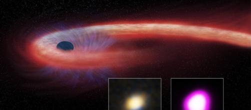 Black Hole Feeds on Star for a Decade - Sky & Telescope - skyandtelescope.com