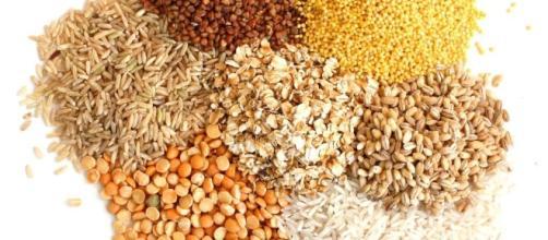 Intolérance au gluten et maladie cœliaque : un fléau sanitaire mal connu