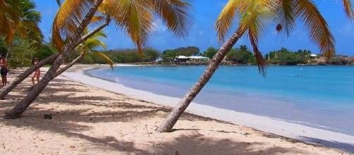 Nordeste Brasileiro é preferência nacional - Praias e Ceara ... - culturamix.com