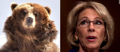 Opinion: The meaning of Betsy DeVos' grizzlies and guns answer ... - cnn.com