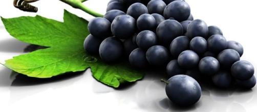 Uva: proprietà benefiche, cosmetiche e nutritive   Tanta Salute - tantasalute.it