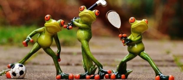 Sporting frogs, Alexis_Fotos, pixabay.com, CC0