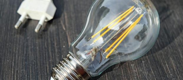 Bonus luce per famiglie in difficoltà: cos'è? - Formiche.net - daomag.it