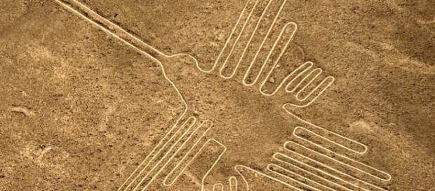 trovata una nuova 'nazca' in mezzo all'Amazzonia