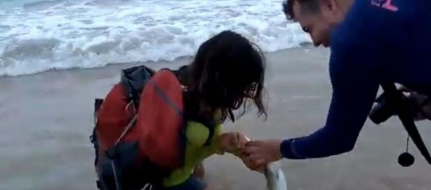 Turista tentou tirar uma selfie com o filhote de tubarão e acabou sendo mordida. Fonte: O POVO online