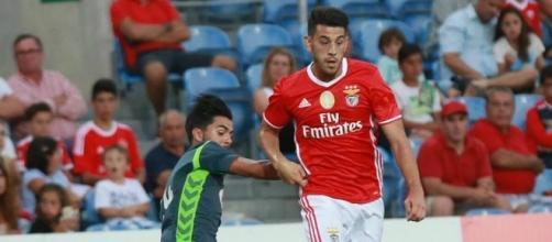 Pizzi é imprescindível no meio-campo do SL Benfica