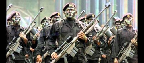 Los Gafes cuerpo militar especializado, el ejercito mexicano posee más de 8 Células militares de elite entrenados para combatir por aire, mar y tierra
