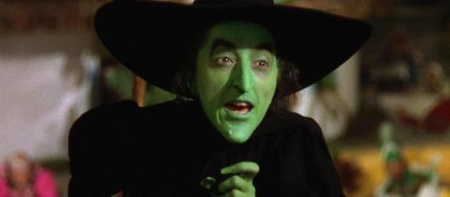 Witches of the world will cast a mass spell on President Trump ... - nydailynews.com