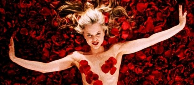 "1000+ images about ""AMERICAN BEAUTY"" on Pinterest 