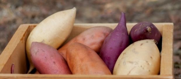 Benefícios da batata-doce para a saúde