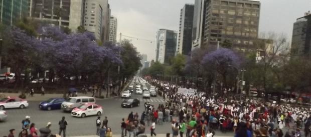 Mega marcha en movimiento Foto. E Barajas