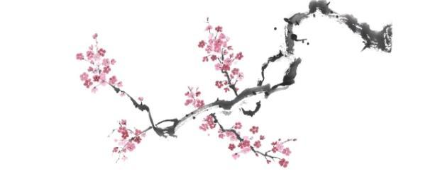 The Zen Habits Book by Leo Babauta — Kickstarter - kickstarter.com