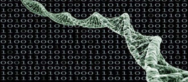 Immer weiter wachsende Datenmengen stellen Forscher auf die Probe