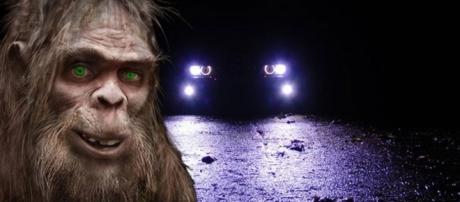5 People in SUV Chased by Bigfoot? - blogspot.com