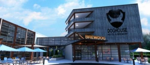 BrewDog's The DogHouse Craft Beer Hotel - AskMen - askmen.com