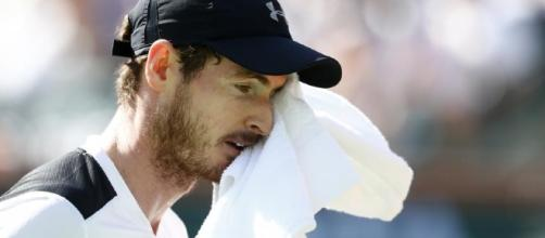Andy Murray: British No. 1 'Wants Family' After Shock Indian Wells ... - newsweek.com