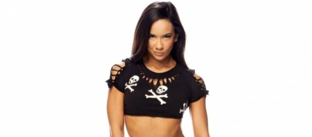 WWE Diva AJ Lee - Biography, Photos and More - Just For Her - justforher.in