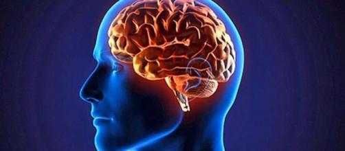Conheça os exercícios da mente