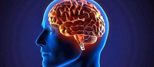 Os 15 exercícios para deixar seu cérebro mais ativo e saudável em 2017