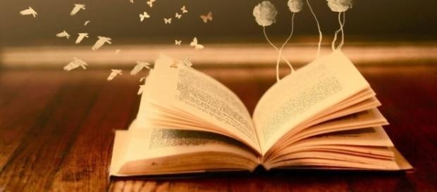 Libro: La lección de vida de Alicia | Todos Somos Uno - com.mx