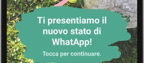 Novità Whatsapp: servizio pubblicità in-app e ritorno del vecchio ... - focustech.it