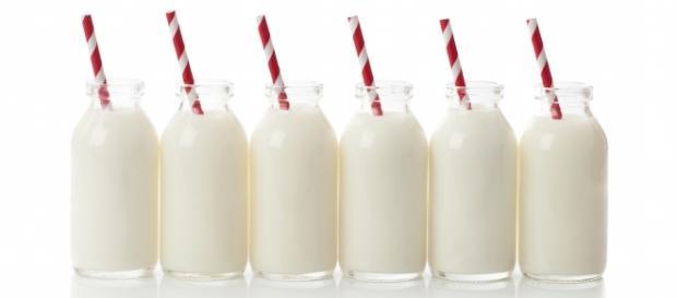 Milk on Flipboard - flipboard.com