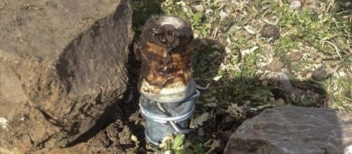cyanide trap injures eastern Idaho boy, kills dog - therepublic.com