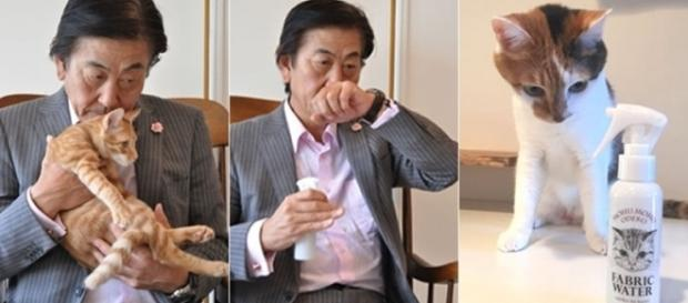 Perfumaria japonesa lança spray com cheiro de ''cabeça de gatinho'' (Reprodução: Twitter)