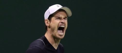 Andy Murray, World No. 1 - telegraph.co.uk