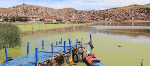 Bolivia e Perù tentano di salvare il lago Titicaca dall'inquinamento - lifegate.it
