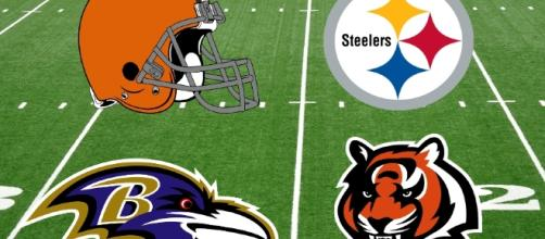 Let's look at the AFC North and what every team needs for next season - thesidelinereport.com