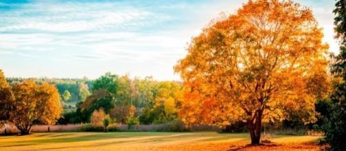 El otoño llegó este 20 de marzo