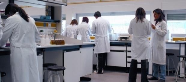 La presencia de mujeres científicas es aún insuficiente. Public Domain.