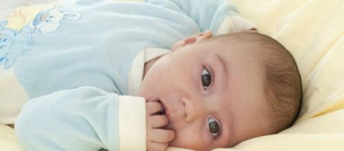 Brain scan predicts autism in babies - phpdrill.com