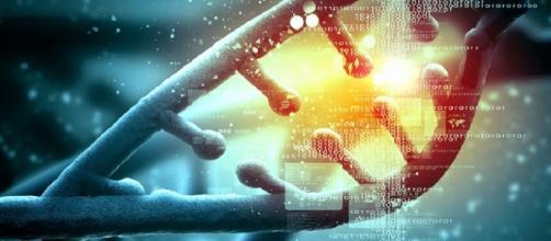DNA - Nin.gish.zid.da - altervista.org