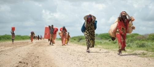 More than 6 million people in Somalia are starving (via bread.org)