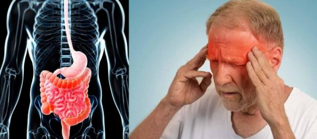 Inflammation is common in humans and animals - mercola.com